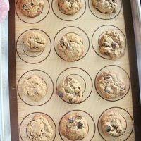 Small Batch Chocolate Chip Cookies- Big Green House
