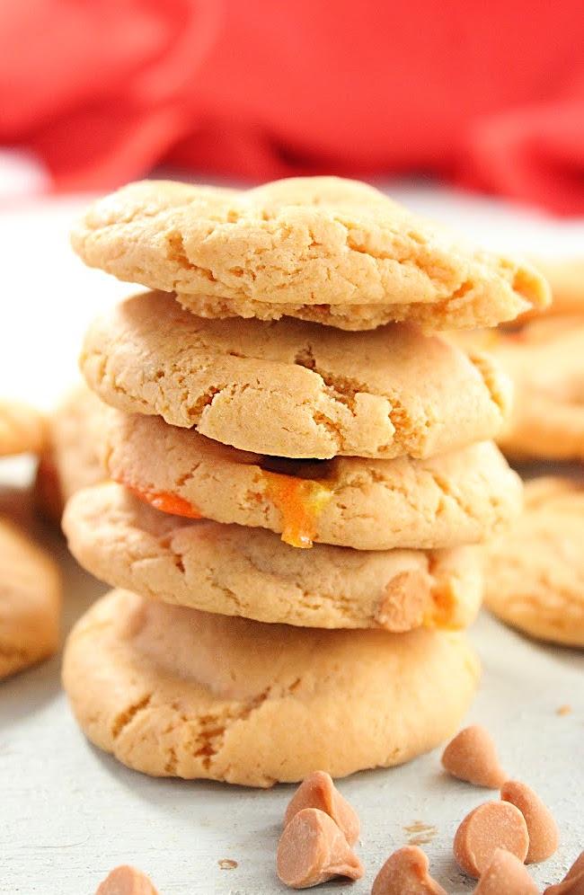 Butterscotch Pudding Cookies- Big Green House